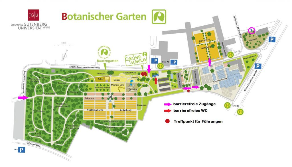 Map of the botanical gardens with indicators to the entrances, the accessible toilet and meeting spot